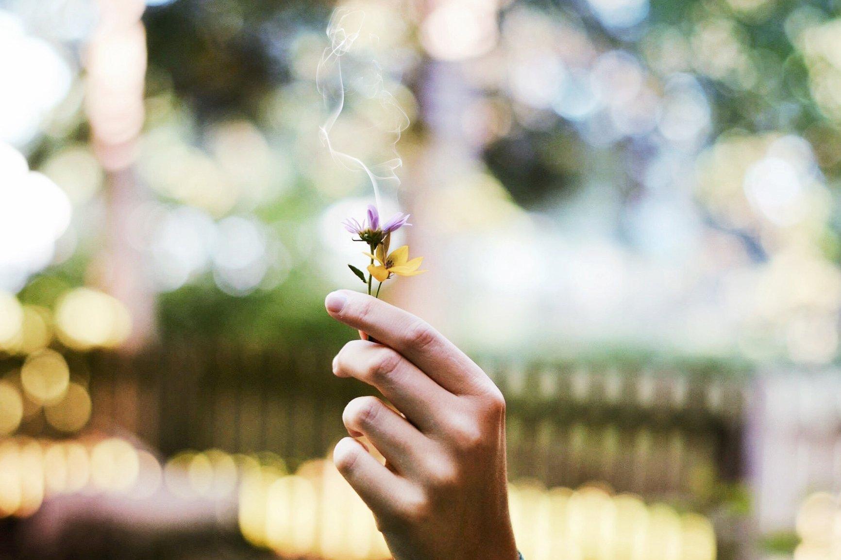 memoria olfattiva fiori