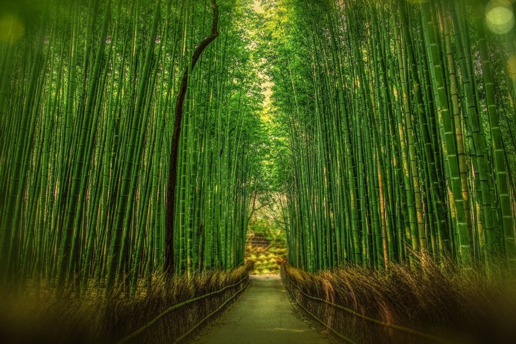 essenze per diffusori Fiori Bamboo