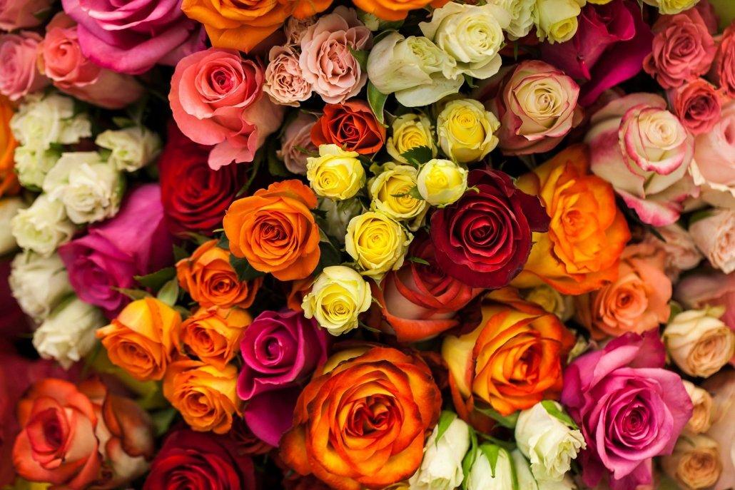 essenze per diffusori fiori giardino di rose