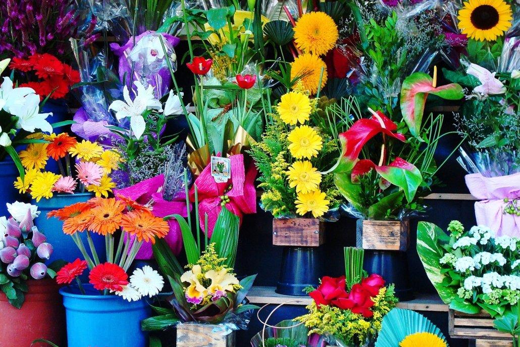 essenze per diffusori fiori negozio di fiori