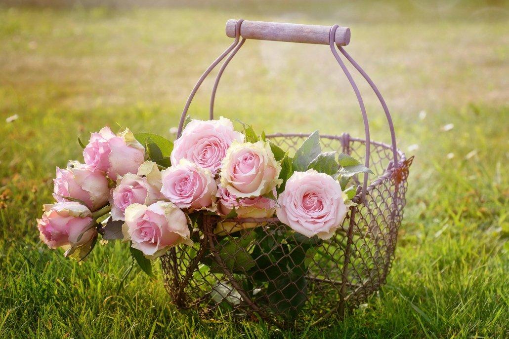 essenze per diffusori fiori rosa