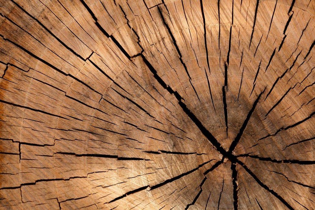 Essenze per diffusori legno fresco