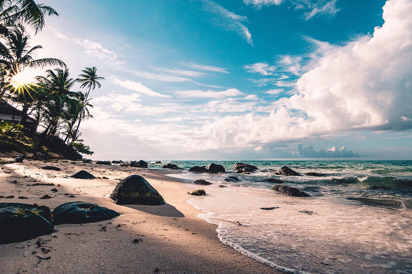profumi naturali fragranze marine