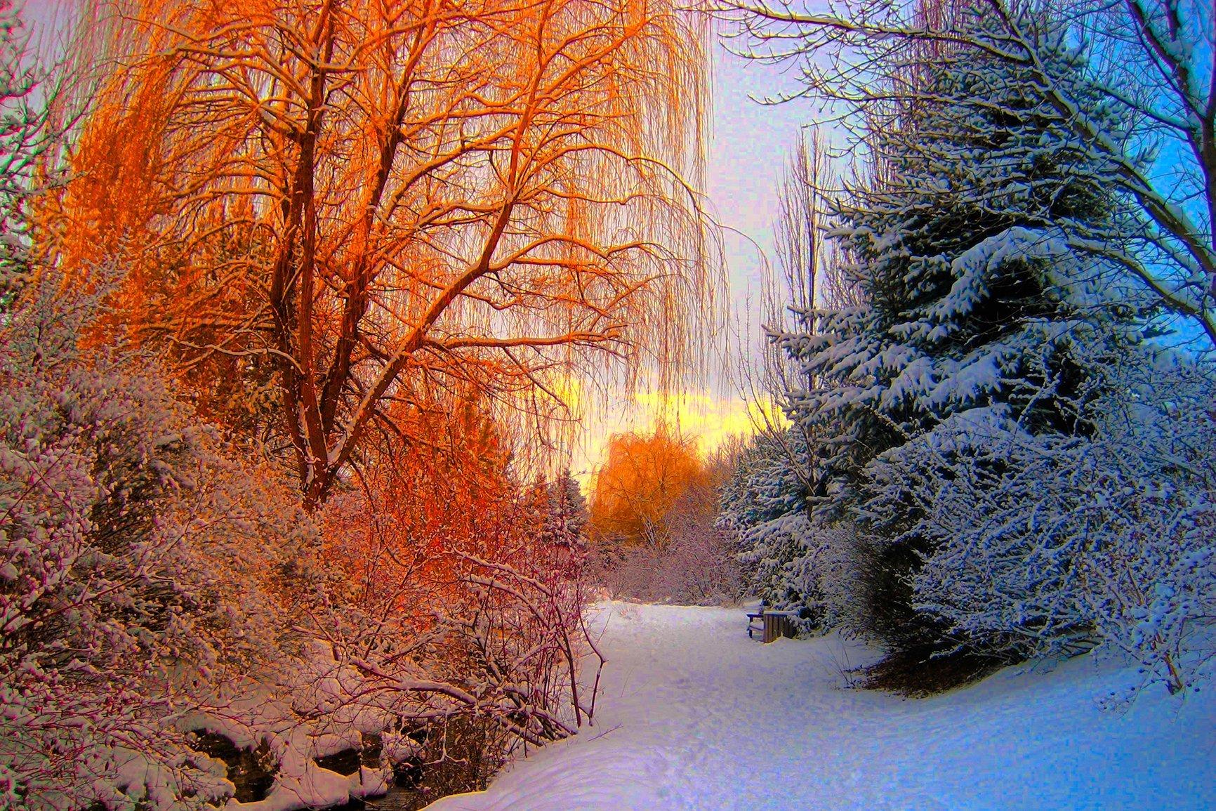 profumi naturali aroma stagioni autunno inverno