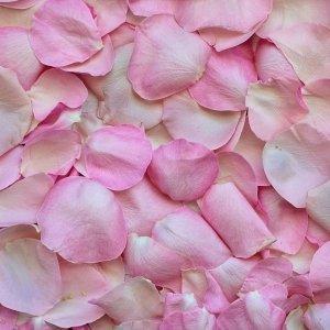 Petalo di rosa fragranza ambiente
