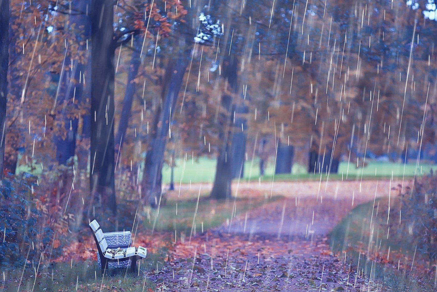 essenze per diffusori sentieri di pioggia