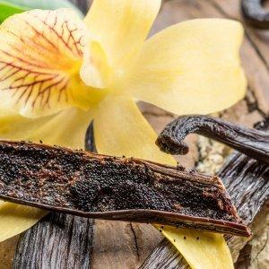 Fragranze ambiente vaniglia