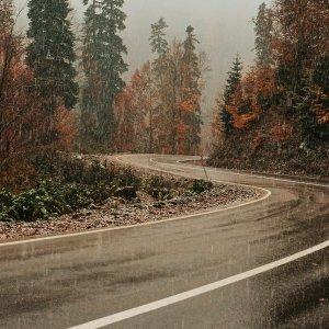 Fragranze composizioni Sentieri di pioggia