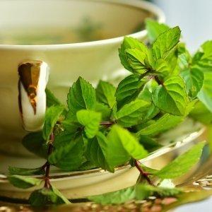Fragranze speciali Aromatherapy