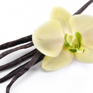 Vanilla Kisses fragranze per ambienti