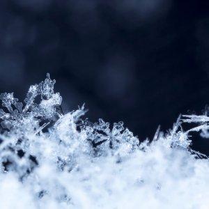 Fragranze invernali winter tale