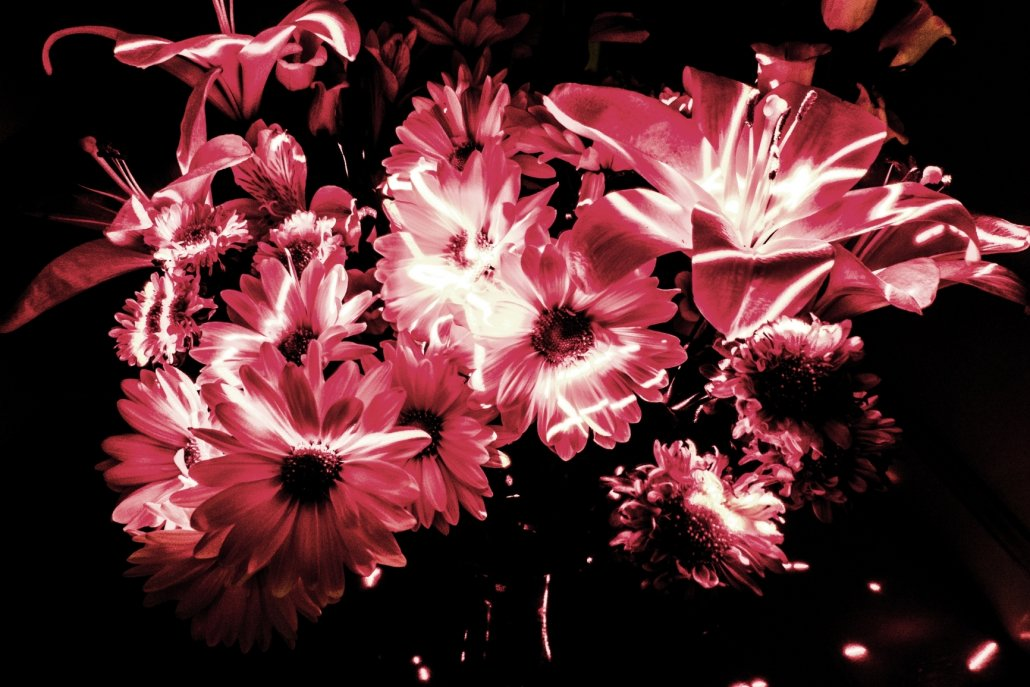 essenze per diffusori fiori Fiori di luce
