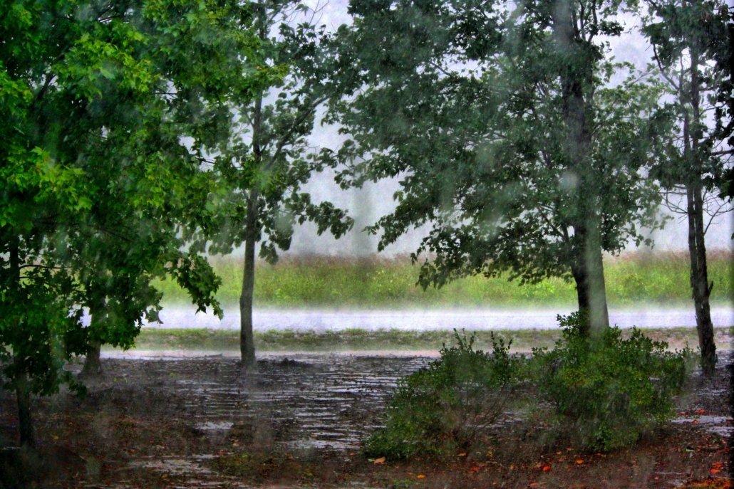 Essenze speciali per diffusori sentieri di pioggia