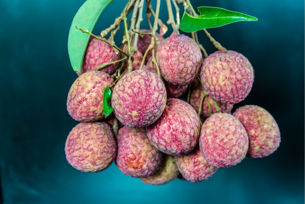 Essenze per diffusori frutta Litchi e pera