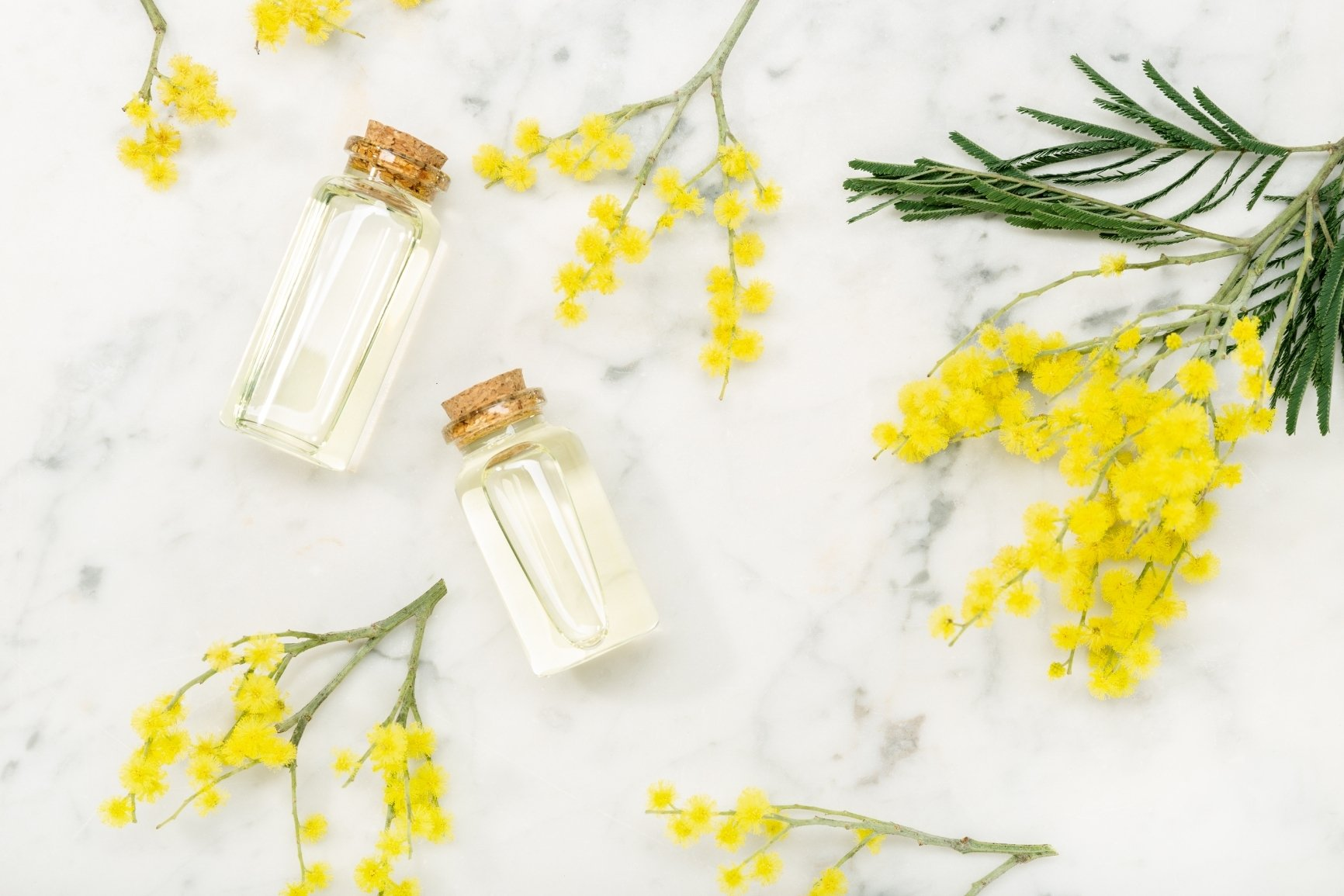 marketing-olfattivo profumatori ambiente